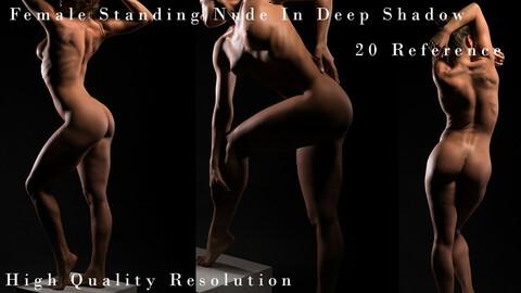 Female Standing Nude In Deep Shadow
