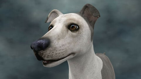MDGH.005 Rigged Dog