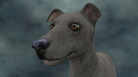 MDGH.006 Rigged Dog