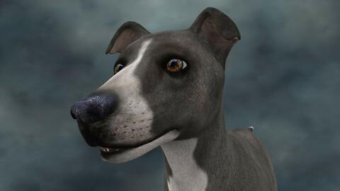 MDGH.008 Rigged Dog