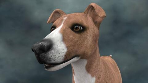 MDGH.015 Rigged Dog