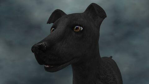 MDGH.016 Rigged Dog