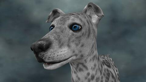 MDGH.018 Rigged Dog