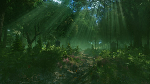 Forest#1 HD Files