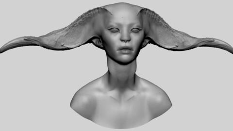 Fantasy Female Head 07