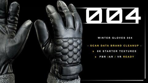 Winter Gloves 004