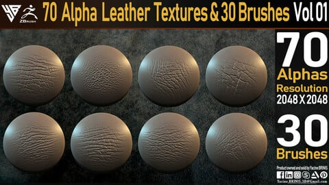 70 Alpha Leather Textures & 30 Brushes Vol 01
