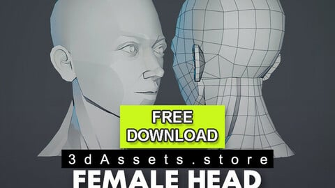 Character - Female Head Planar