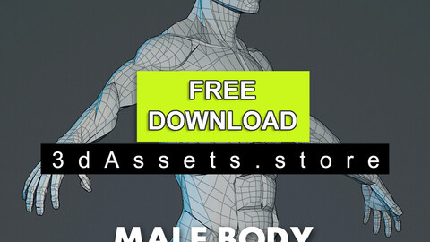 Character - Male Planar Anatomy
