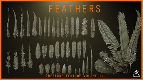 FEATHERS - 40 High poly sculpts and IMM Brush