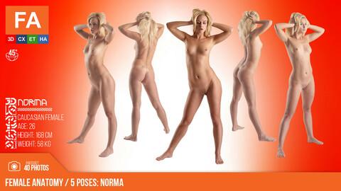 Female Anatomy | Norma 5 Various Poses | 40 Photos