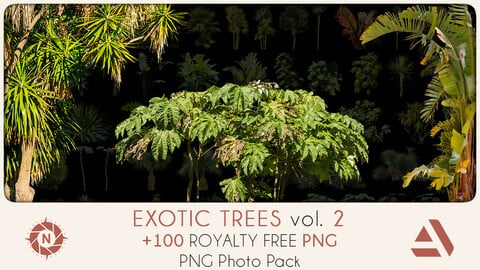 PNG Photo Pack: Exotic Trees volume 2