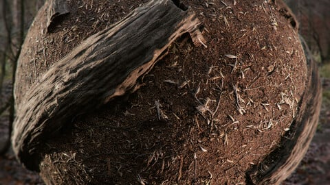 PBR - FOREST SOIL, TRUNKS, CHIPS, TWIGS, LOGS - 4K MATERIAL PACK