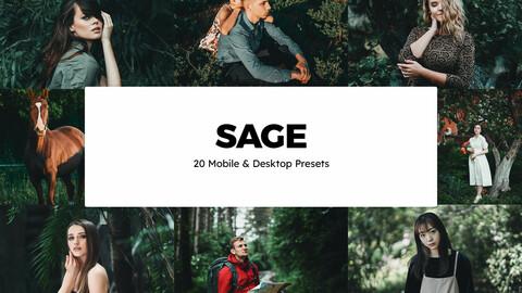 20 Sage LUTs and Lightroom Presets