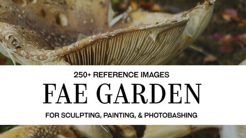 Fae Garden - Photo Reference Pack