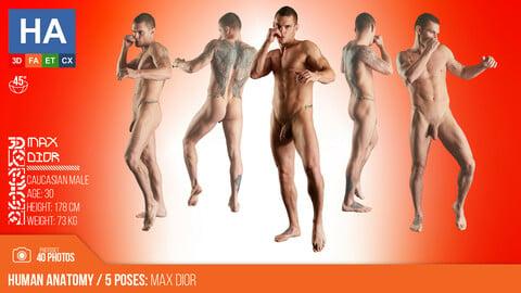 Human Anatomy | Max Dior 5 Fighting Poses | 40 Photos