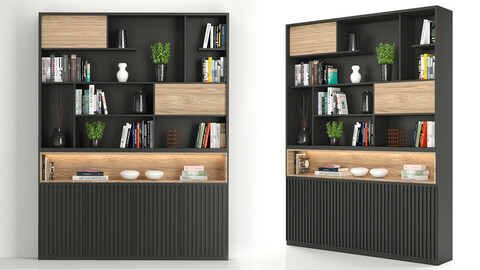 Rack and Bookcase 02