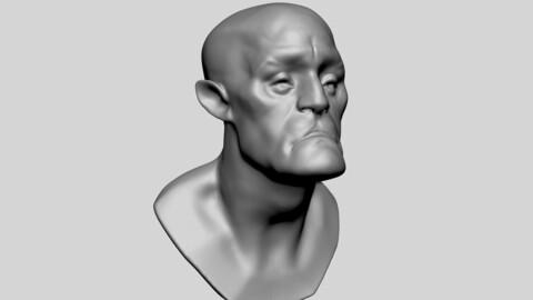 Stylized Head