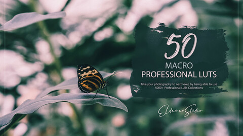 50 Macro LUTs and Presets Pack