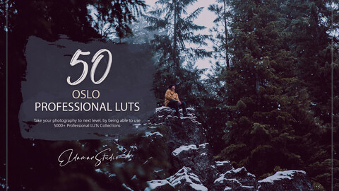 50 Oslo LUTs and Presets Pack