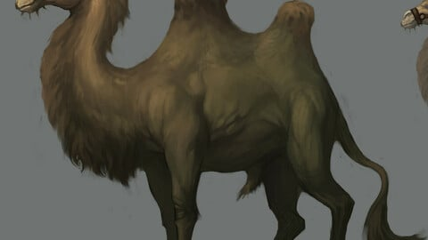 Low poly 3D characters-Camel
