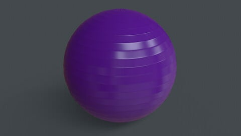 PBR Yoga Ball - Purple