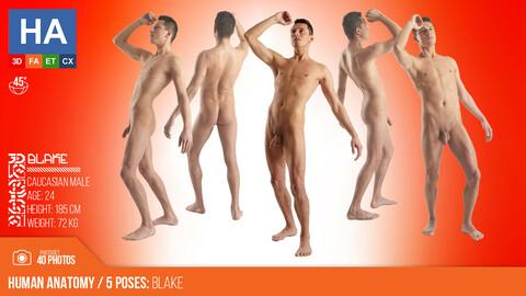 Human Anatomy |  Blake 5 Various Poses | 40 Photos