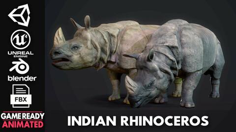 Indian Rhinoceros - Game Ready
