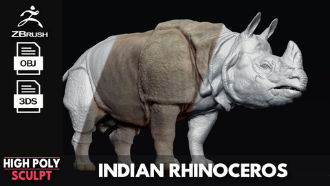 Indian Rhinoceros - Sculpt