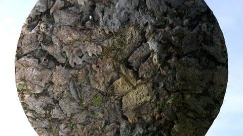 Dry Leaf Ground 1 PBR Material