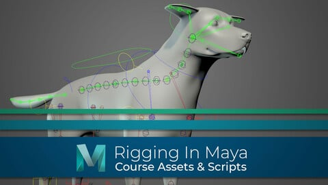 Rigging In Maya: Quadruped - Full Course Assets