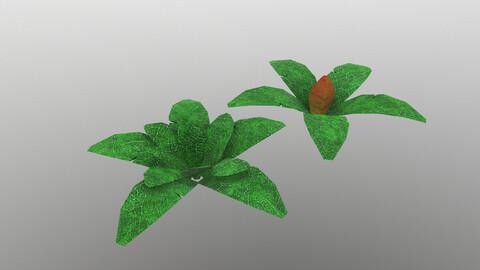 Low Poly Tropical Plant 3D Model