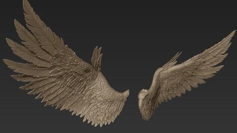 Wings Sculpt 2