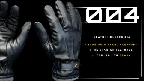 Leather Gloves 004