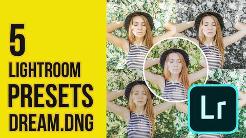 Dream Presets DNG for Lightroom