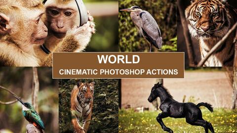 PHOTOSHOP ACTIONS – Photography Photo Editing, Photoshop Edit