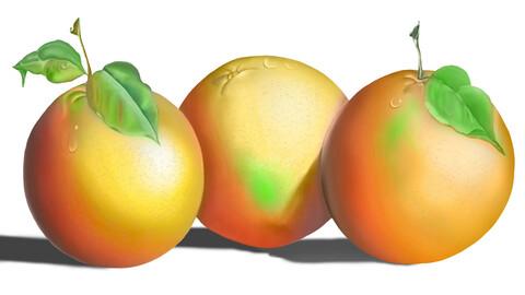 Painting orange fruits