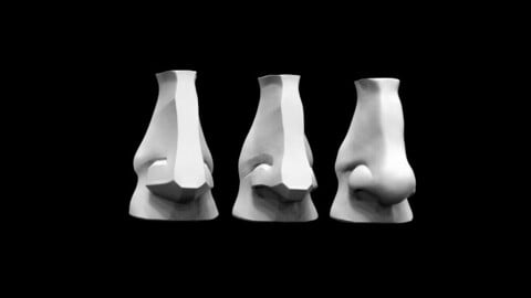 Planes of The Nose (David's Nose)