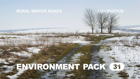 Env Pack 31 / Rural Winter Roads / Reference pack