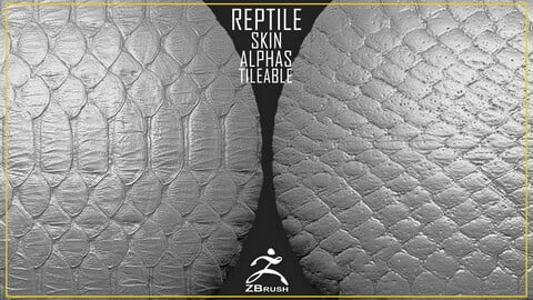 Reptile Skin Alphas Tileable (ZBrush, 2K)