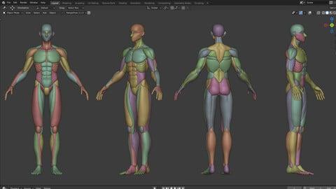 Male, stylized muscle 3d model