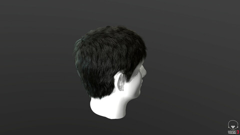 Real-time hair Low-poly