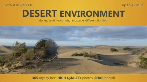 DESERT environment - 365 HIGH QUALITY photos, different lighting, up to 42 MPX