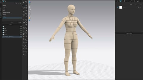 Realistic avatar-mannequin for Clo3D Size 6 US