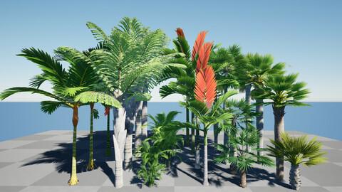 HQ Plants Volume 6 Palms for unreal engine 3D model set of 24