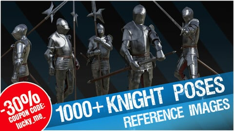Knight Poses - Over 1000 Reference Images