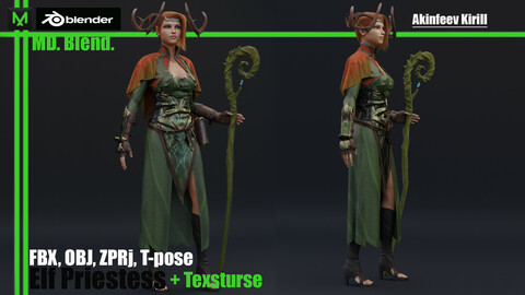 Elf Priestess 2