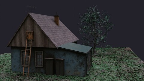 House east styled asset