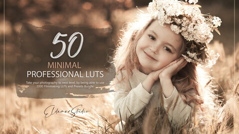 50 Minimal LUTs and Presets Pack