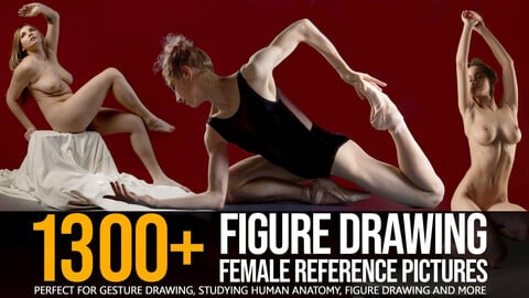 1300+ Figure Drawing Female Reference Pictures